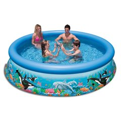 Надувной бассейн Intex Ocean reef easy set pool (28124) Spok